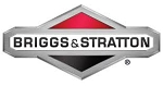 Briggs & Stratton # 699998 cup-fuel fresh